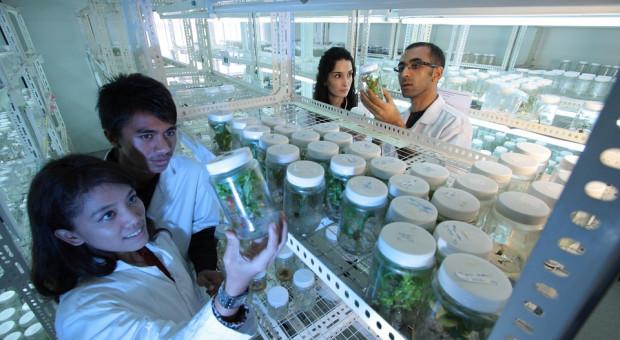 Opole: polskie biotechnologie wchodzą na rynek państw arabskich