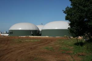 Lewiatan: nowe pomysły ME dot. biopaliw korzystne dla branży paliwowej