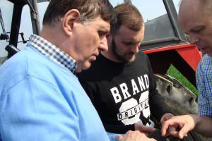 Z rozwiązań 365FarmNet każdy zainteresowany rolnik dzięki aplikacji mobilnej może korzystać dosłownie na polu, nawet  w trybie offline, fot. ArT