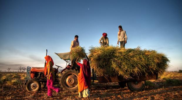 Indie: strajk głodowy rolników przeciwko nowym ustawom rolnym