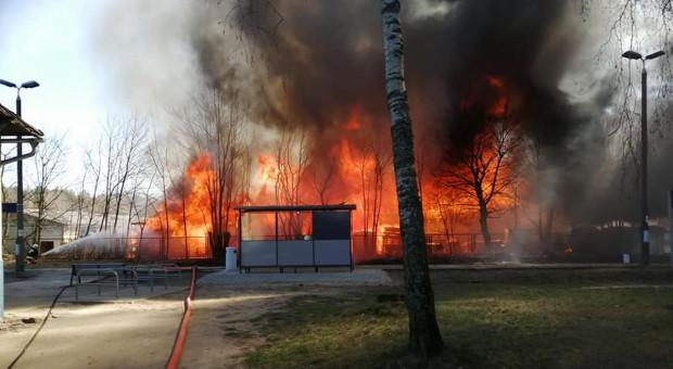 Gigantyczny pożar tartaku pod Kościerzyną