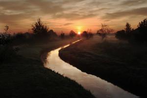 Prawie 700 tys. pstrągów trafiło do dolnośląskich rzek