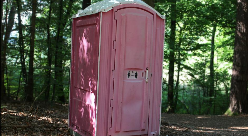 Skradł i wywiózł z lasu toaletę