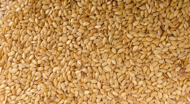 GIS ostrzega: salmonella w łuskanym sezamie