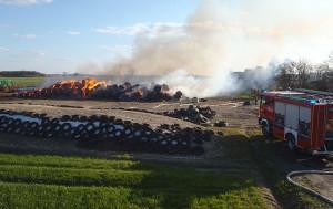 Strażakom udało się uratować zapasy kiszonki w pryzmach, które znajdowały się obok siana
