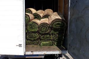 Auto załadowane trawą w rolkach ważyło 8,1 tony, czyli o 4,6 tony za dużo