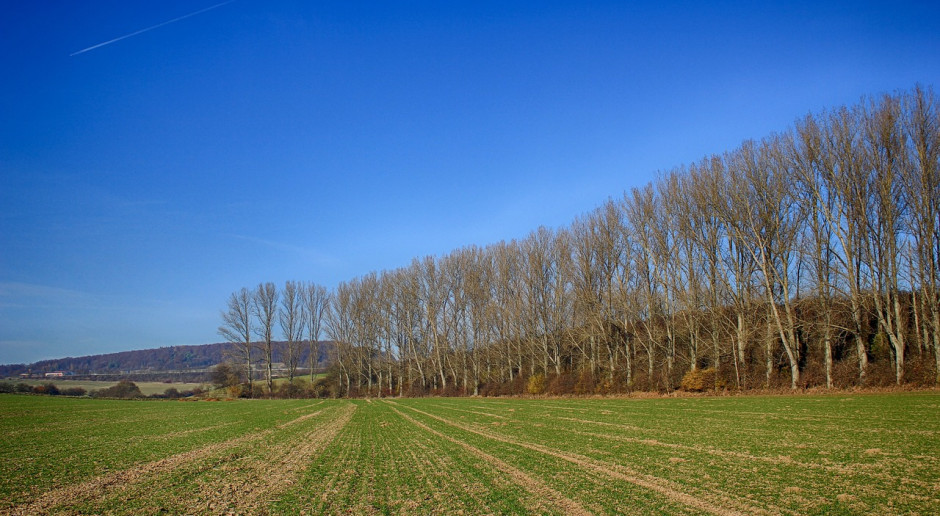 Rosja: Zasilono nawozami 12,6 mln ha, siew roślin jarych przeprowadzono na 1,8 mln ha