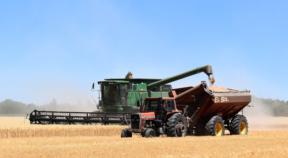 USDA: Prognozy zbiorów zbóż w UE