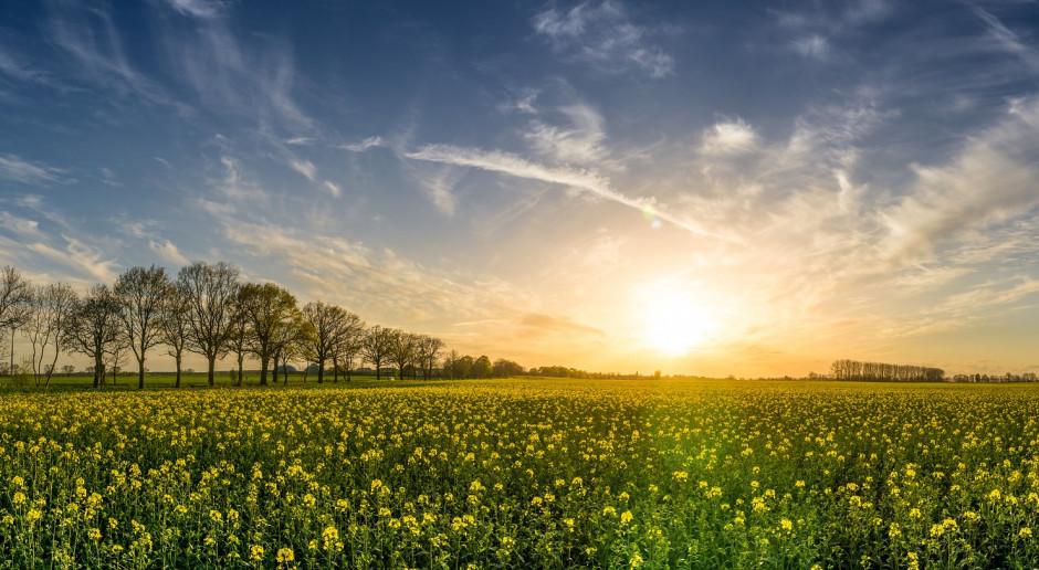 Sejm znowelizował ustawę o obrocie ziemią rolną