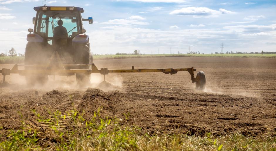 Litwa ogłosiła sytuację nadzwyczajną w związku z suszą