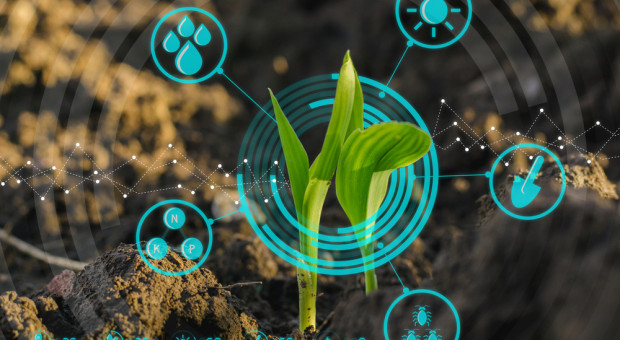 Yara i IBM stworzą cyfrową platformę dla rolników