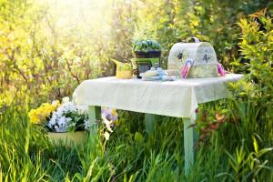 Wyższe stawki płatności dla ekologicznych upraw z PROW
