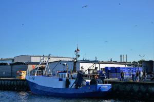 Gróbarczyk: KE zaproponuje wstrzymanie połowów dorsza na Bałtyku na pół roku, ale to nie wystarczy