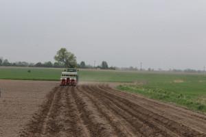 Pokaz zorganizowano w ramach targów Agrotechnika w Łódzkim Ośrodku Doradztwa Rolniczego w Bratoszewicach