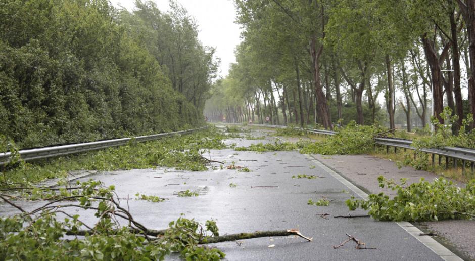 IMGW wydało ostrzeżenia pogodowe dla kolejnych województw