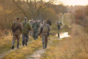 Projekt: myśliwi będą mogli polować na dziki tylko z odkażonym sprzętem