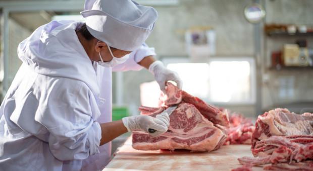 Holendersko-niemiecka grupa mięsna Vion zamknie zakład w Germaringen
