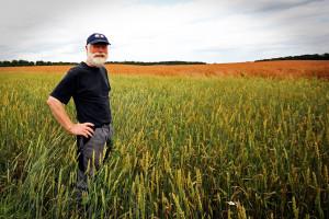 Fińscy rolnicy starzeją się, wolniej spada liczba gospodarstw