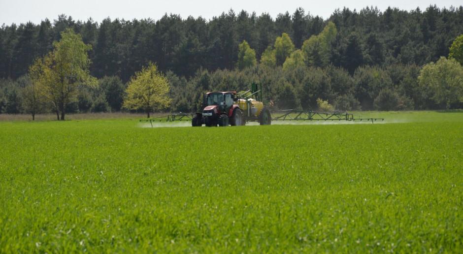 Ochrona liścia flagowego pszenicy w terminie T-2