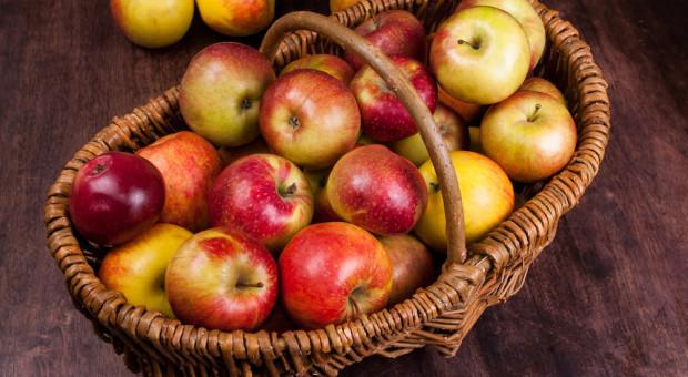Inwazja polskich jabłek nad Sekwaną