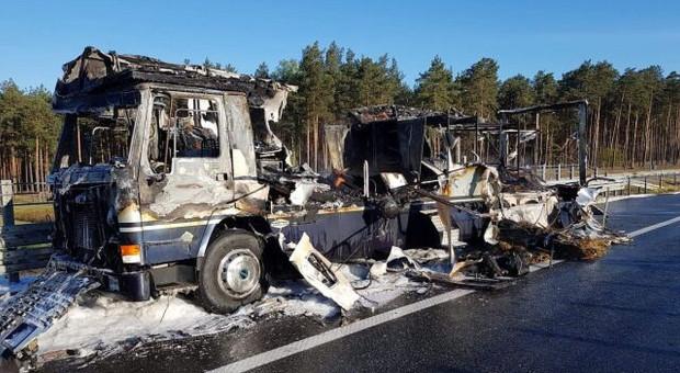 W pożarze ciężarówki na A1 spłonął koń szwedzkiej olimpijki