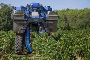 Francja: Lepsze nastroje rolników