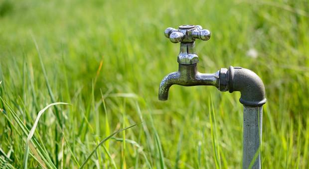 Ardanowski zapowiada pomoc po suszy i zmiany w systemie ubezpieczeń