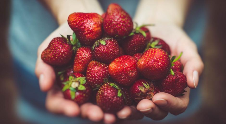 Holding rolno-spożywczy będzie już wkrótce