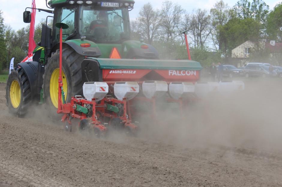 Agro-Masz Falcon w siewie kukurydzy, fot. kh