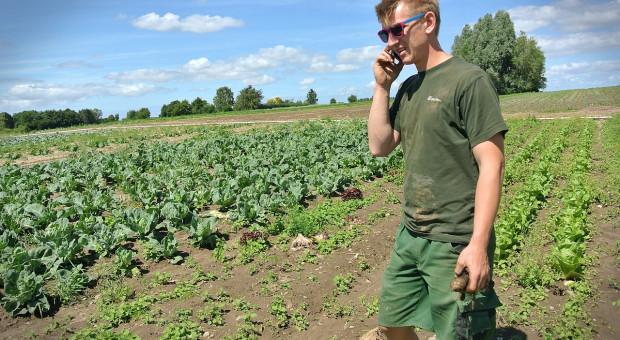 Duńczycy uwielbiają żywność ekologiczną
