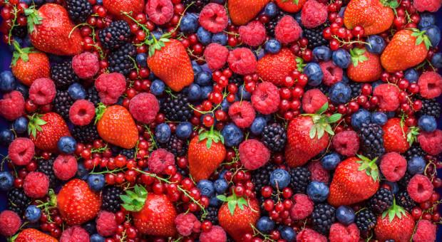 KUPS: w tym roku nie będzie klęski nieurodzaju owoców
