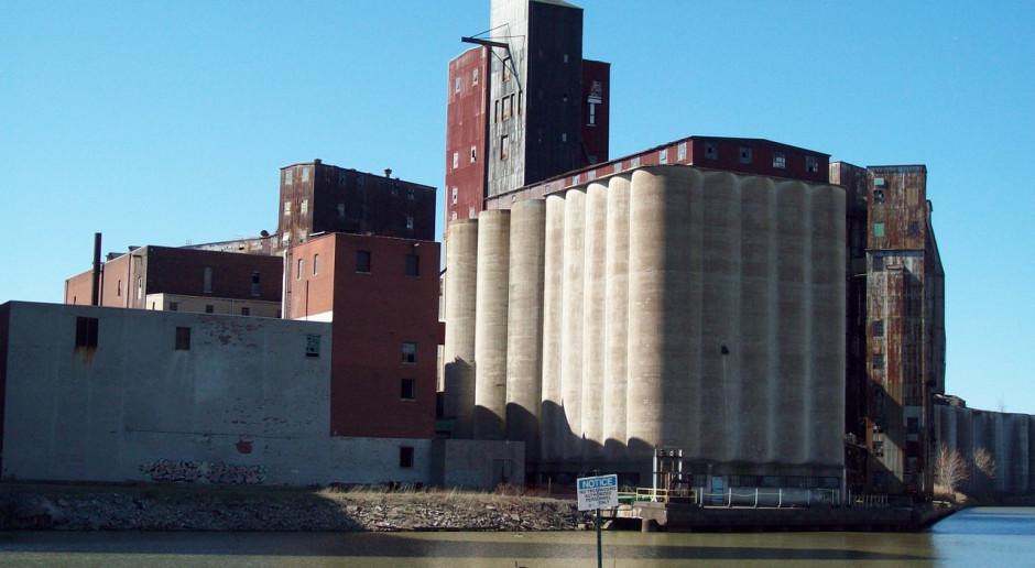 USDA: Większe światowe prognozy produkcji pszenicy i zbóż paszowych w sezonie 2019/2020