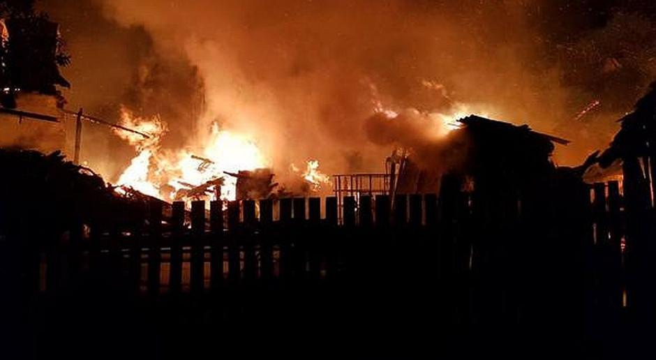 W pożarze chlewni spłonęło prawie 2 tysiące warchlaków
