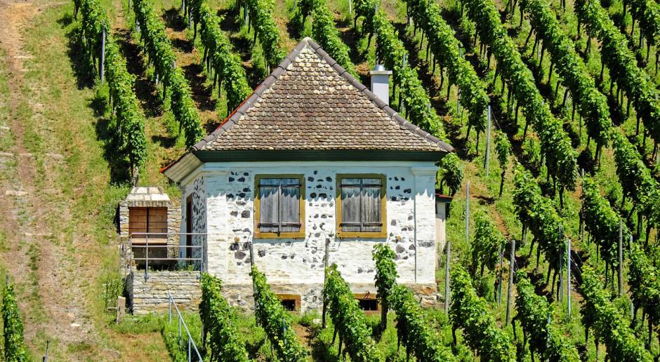 KE: Nowe przepisy dotyczące produkcji wina w UE