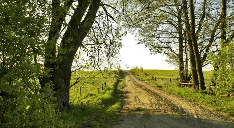 Podkarpackie: ponad 13 mln zł na budowę dróg do gruntów rolnych