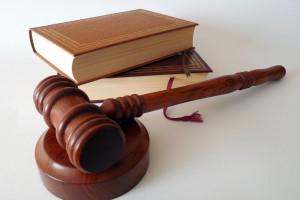Holandia: Oskarżono 64 działaczy na rzecz praw zwierząt