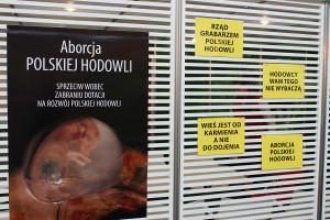 Wnioskując po załączonych hasłach, polska hodowla może ucierpieć na ograniczeniu wsparcia finansowego