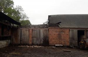 Na szczęście dach zawalił się na części budynku, gdzie nie były trzymane zwierzęta