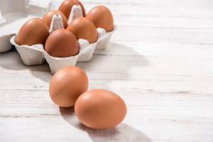 Jajka skażone pałeczkami salmonelli