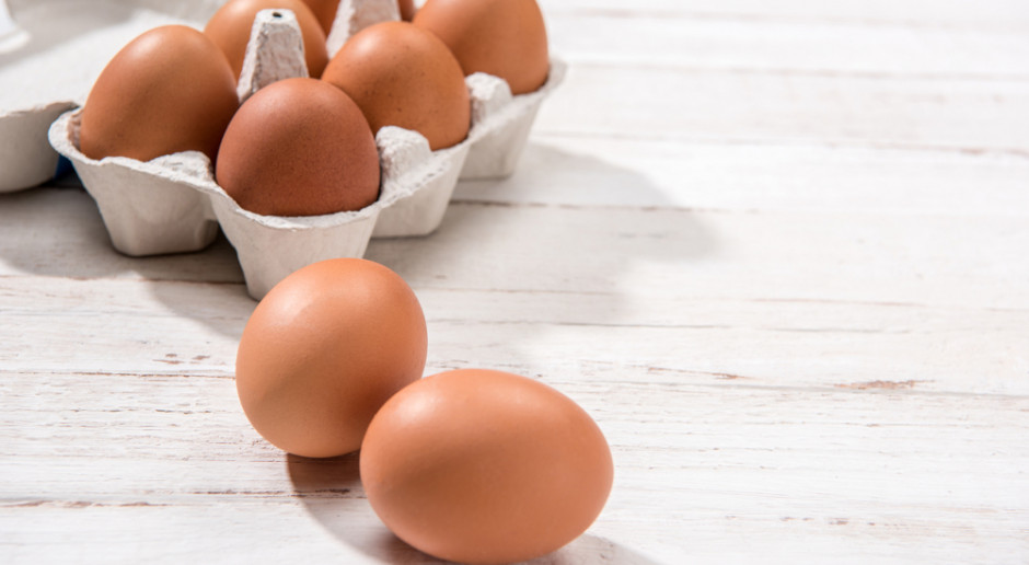 Coraz więcej sieci rezygnuje ze sprzedaży jaj klatkowych
