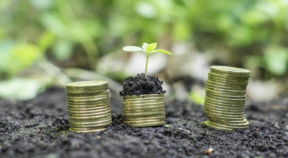 Jakie ceny użytków rolnych na koniec roku 2020?