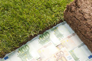 Ruszają nabory wniosków z PROW: dla młodych, na restrukturyzację i zalesianie