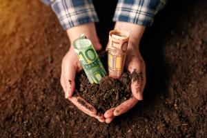 Będzie minimalne wynagrodzenie w rolnictwie dla całej UE?