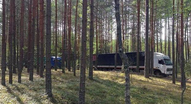 Rosjanie chwalą się przejęciem nielegalnych jabłek z Polski. Ciężarówki przedzierały się przez las
