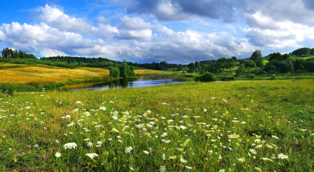 Ustawa ułatwiająca obrót ziemią rolną z podpisem prezydenta