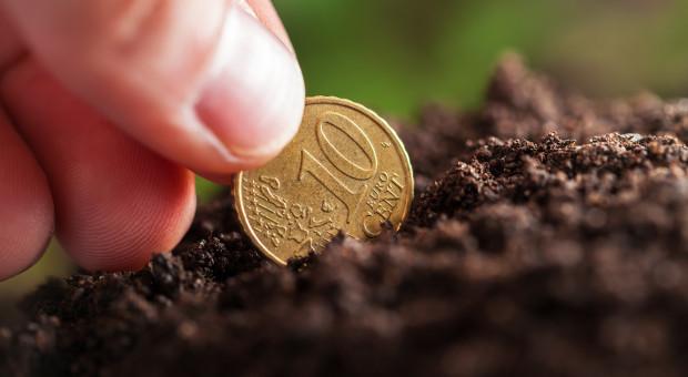 Upływa termin naboru wniosków o dopłaty bezpośrednie