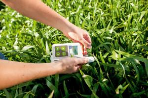 Yara N-Tester – niewielkie urządzenie do określenia zawartości azotu w roślinach daje też możliwość ustalenia dawki nawożenia