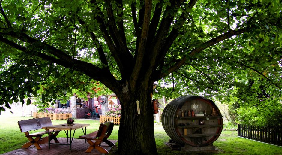 Ardanowski: wieś jest coraz atrakcyjniejszym miejscem wypoczynku