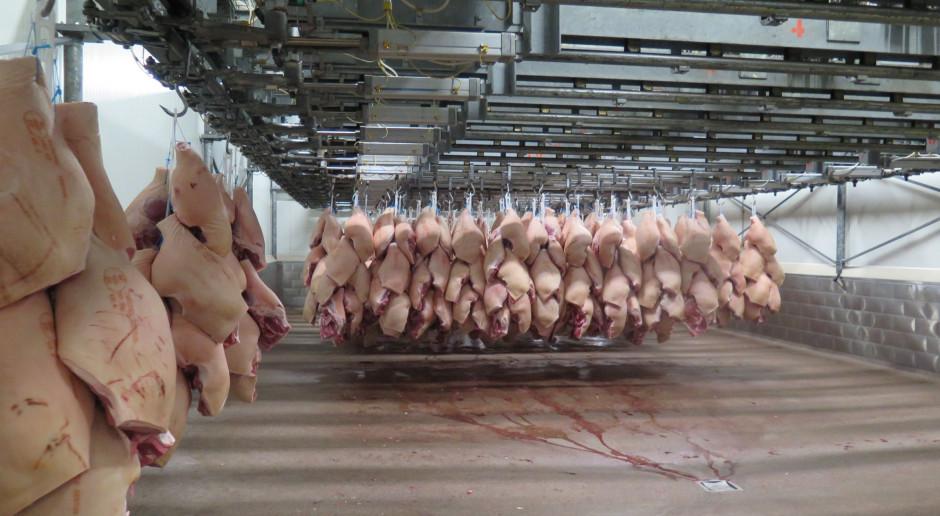 Będą dodatkowe etaty dla weterynarzy w zakładach eksportujących wieprzowinę do USA