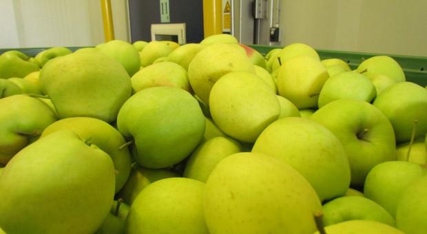 MRiRW będzie określać cenę bazową dla produktów rolnych